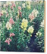 Flowers At Noon Wood Print