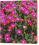 Flowers For Wallpaper Wood Print