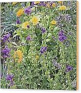 Flowers In Charlottenburg Palace Garden Wood Print