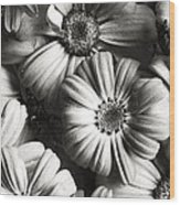 Flowers In Sepia Tone Wood Print