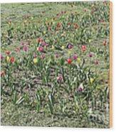 Flowers In Spring Wood Print