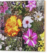 Flowers In Stephanie's Garden Wood Print