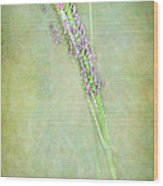 Flowers Of The Grass Wood Print