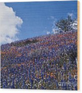 Flowers On A Hill Wood Print