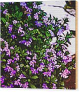 Flowers On The Hill Wood Print