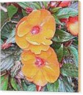Flowers Plastic Or Real  Wood Print