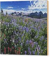 Flowers With Tattosh Mountains, Mt Wood Print
