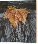 Flowing Leaf Wood Print