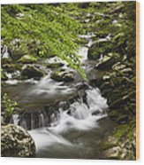 Flowing Mountain Stream Wood Print