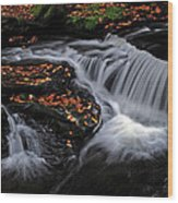 Flowing Through Fall Color Wood Print