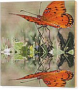 Fluttering Reflections - Butterfly Wood Print