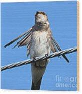Fluttering Swallow Wood Print