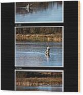 Fly Fishing Triptych Black Background Wood Print