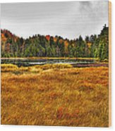 Fly Pond On Rondaxe Road Wood Print