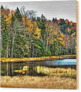 Fly Pond On Rondaxe Road II Wood Print