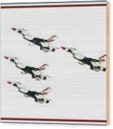 Flyby Wood Print
