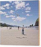 Flying A Bird Kite Near Haystack Rock Canon Beach Oregon Usa Wood Print