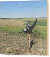 Flying Baby Pandas. North Dakota. Wood Print
