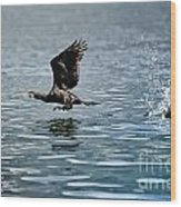 Flying Cormorant Bird Wood Print by Mats Silvan
