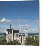 Flying High Over Neuschwanstein Wood Print