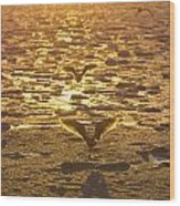 Flying Over Icy Waters Wood Print