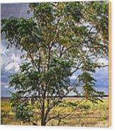 Fm 162   1 Wood Print