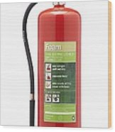 Foam Fire Extinguisher Wood Print by Mark Sykes