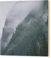 Fog Blankets Spruce Trees  In Yoho Wood Print