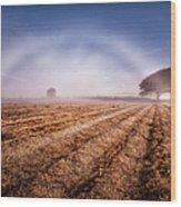 Fog Bow Wood Print