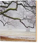 Fog In The Park Wood Print