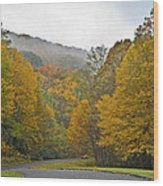 Foggy Autumn Day Wood Print