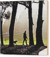 Foggy Day To Walk The Dog Wood Print