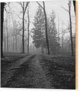 Foggy Lane By The Lake Wood Print