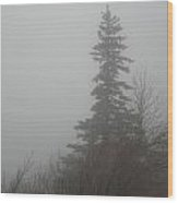 Foggy Sentinel Wood Print