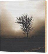 Foggy Winter Morning Wood Print