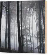 Foggy Woods Ireland Wood Print