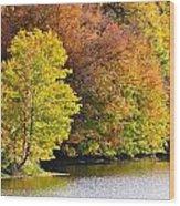 Foliage On The Pond Wood Print