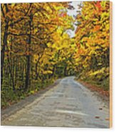 Follow The Yellow Leafed Road Painted Wood Print