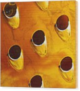 Food Grater Abstract 4 A Wood Print