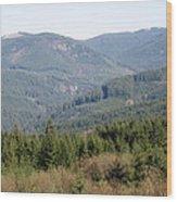Foothills Wood Print