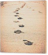 Footprints In Sand Wood Print by Paul Velgos