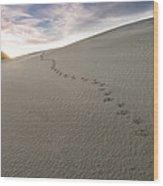 Footprints In Sand  Wood Print
