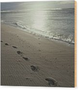 Footprints In The Sand On A Beach Wood Print