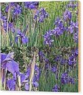 for Iris Wood Print