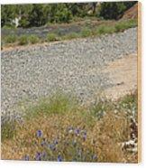 For Purple Mountain Majesties Wood Print