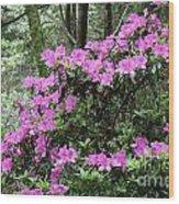 Forest Azealia Tree Wood Print
