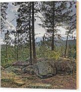 Forest Boulder Formation Near Red Lake Washington Wood Print