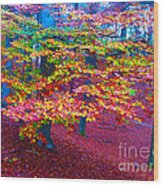 Forest Color Leaves Wood Print