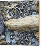 Forest Detritus Wood Print