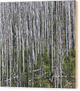 Forest Fire Sticks-2 Wood Print